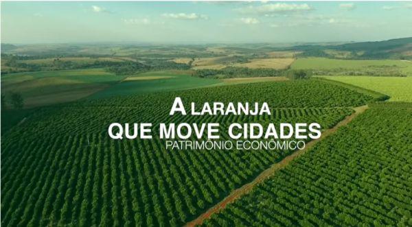Laranja Patrimônio do Brasil EP01: A laranja que move cidades